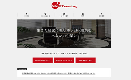 Astic IT Consulting